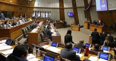 """Diputados rechaza veto presidencial a ley sobre """"ruidos molestos"""""""