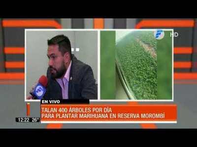 Reserva Morombí a merced de narcos