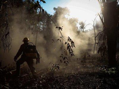 Deforestación: Amazonía brasileña alcanza mayor nivel en más de una década