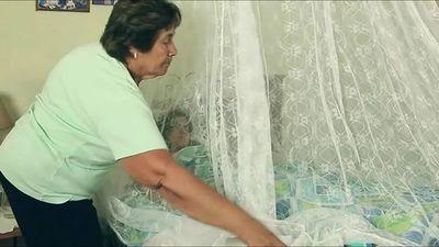 Salud registra dos nuevos casos de dengue