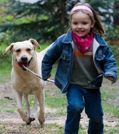 ¿Cómo convencer a un niño a renunciar a querer una mascota?