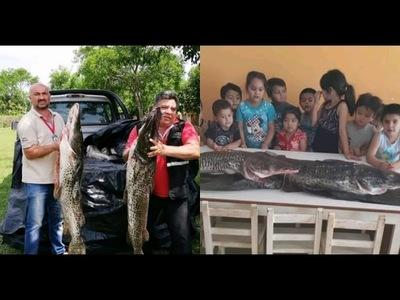 DECOMISAN Y DONAN IMPORTANTE CANTIDAD DE PESCADOS EN PLENA TEMPORADA DE VEDA