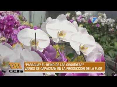 """""""Paraguay, el reino de las orquídeas"""""""