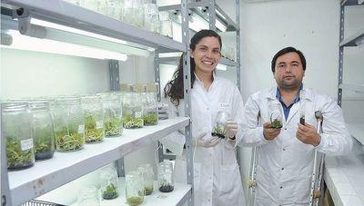 La UNA, cuna de la producción científica paraguaya