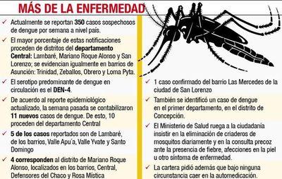Alertan sobre  nuevos casos de dengue en Dpto. Central
