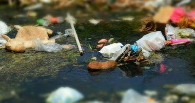 Desidia e inconsciencia minan de basura tóxica los cursos de agua