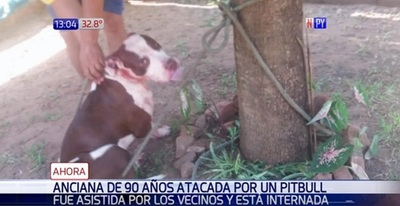 Anciana está internada víctima de pitbull