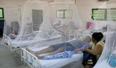Reportan más de 500 casos sospechosos de dengue por semana