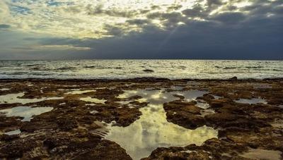 Lo más grave es la destrucción del ecosistema marino, advierte científico