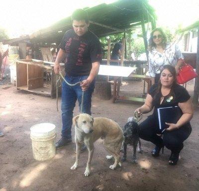 Rescatan perros en supuesta situación de maltrato