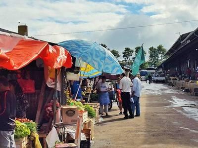 Campesinos 'volantean' en Abasto para informar sobre crisis