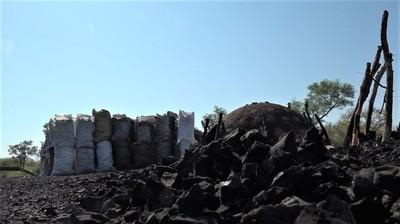 Carbonerías en el Chaco: Transformar en energía el árbol derribado