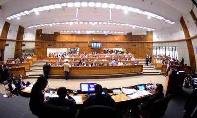 Confusión, reconsideraciones y violaciones al reglamento, en tratamiento del PGN en Diputados