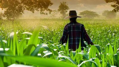 Egresados de escuelas agrícolas viajan a Estados Unidos