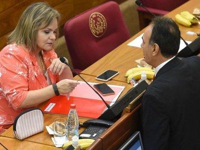 """Lilian advierte """"problemas graves"""" con el uso del sistema electrónico"""
