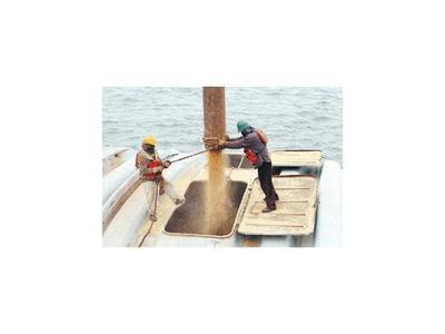 Bajante del río complicará envíos de soja, según gremio