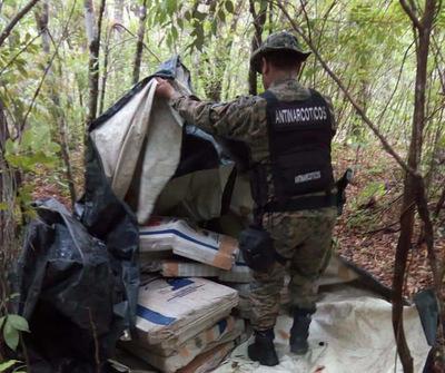 Incautan 587 kilos de marihuana en Reserva Paso Bravo