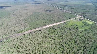 SENAD incautó 300 kg de cocaína en pista de aterrizaje del Chaco
