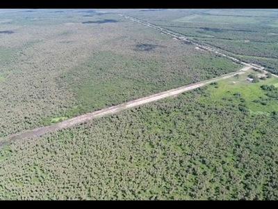 OPERATIVO TIJERA: INCAUTAN 300 KILOS DE COCAÍNA Y APREHENDEN A NARCOS