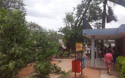 Fuertes vientos dejaron fuera de servicio a 35 alimentadores de la ANDE