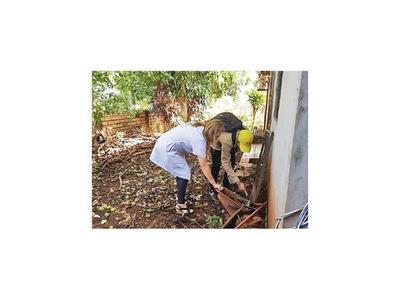 Registran mayor aumento de dengue en área metropolitana