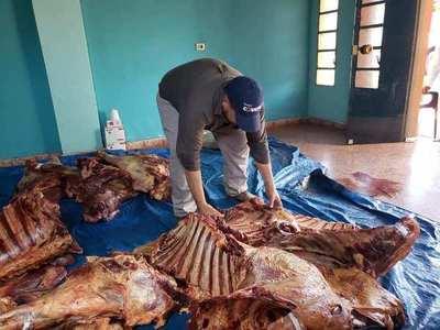 Caazapá: Incautan 510 kilos de carnes, productos del abigeato