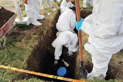 Hallaron 50 cuerpos en una fosa en Colombia
