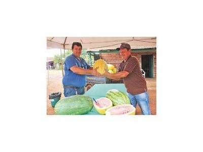 Sandía amarilla fue la fruta novedosa  de    Expo   en Tavapy