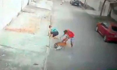 El impactante video de un joven que salva a un niño de un pitbull