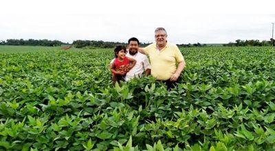 Soja: celebran buen desarrollo y esperan cosechar 10 millones de toneladas