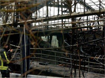 Mueren 30 animales en incendio de zoológico alemán