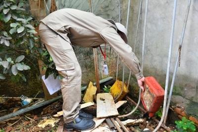 """Campaña """"Pará-na los criaderos"""" continúa con tareas de limpieza en Alto Paraná"""