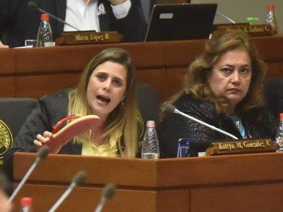 Diputada Kattya González presentó proyecto contra la jubilación Vip