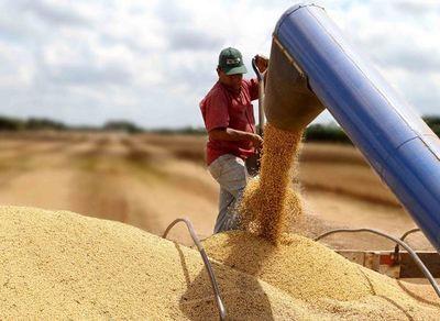 Empresarios preparan envío de granos al mercado turco