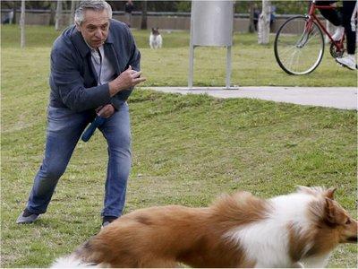 Dylan, el perro de Alberto Fernández, cumplió años y el mandatario lo saludó en redes