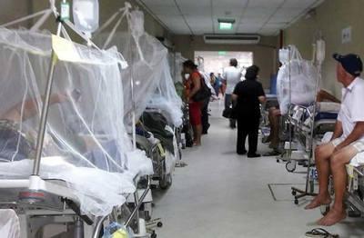Lambaré epicentro del dengue