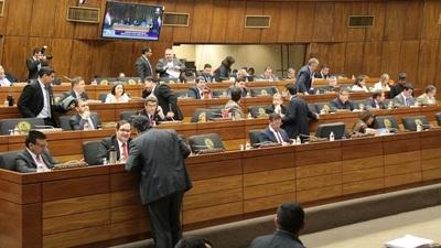 """""""Marca Paraguay"""" en estudio en Diputados está pendiente de dictamen de comisiones"""