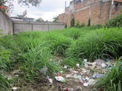 De 1 a 100 jornales es la multa a que se exponen los que no limpian sus inmuebles.