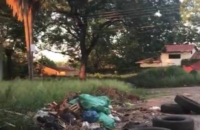 HOY / Lambaré no se escapa del dengue: patio baldío frente a colegio es un criadero de mosquitos