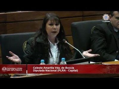Diputada Celeste Amarilla rechazó la distritación de Chiriguelo