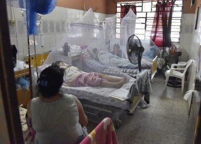 Gobernación de Central declara emergencia por dengue