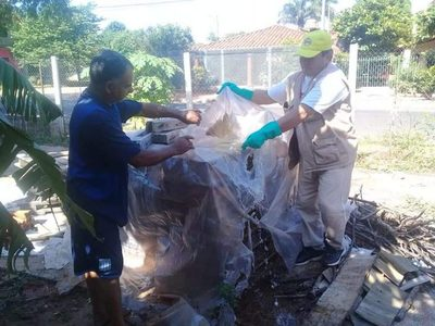 Central se prepara para combatir la epidemia del Dengue