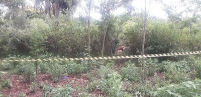 Continúan investigado el cuádruple homicidio en Pdte. Franco
