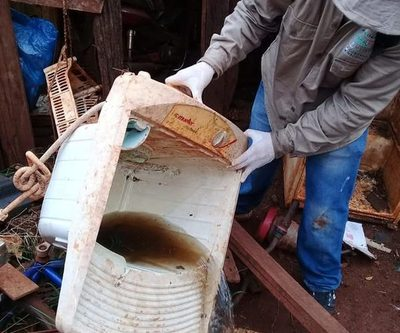 Todo recipiente de agua que se almacena en las casas o terrenos baldíos son los principales criaderos de mosquitos