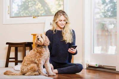 Los mejores gadgets para mascotas que puedes comprar