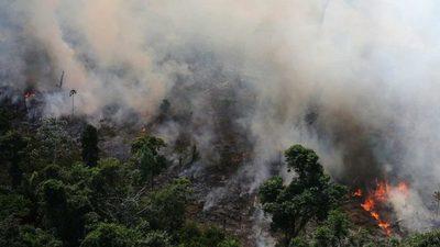 Deforestación en la Amazonía brasileña en 2019 fue 85 % mayor que en 2018