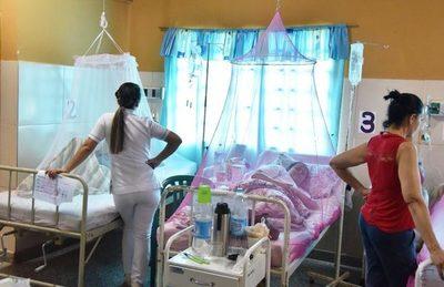 Dengue: la infección también puede resultar asintomática