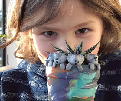 Un niño tuvo una idea para ayudar a los animales de Australia