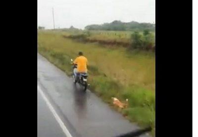Imputan a motociclista por arrastrar a un perro en Misiones