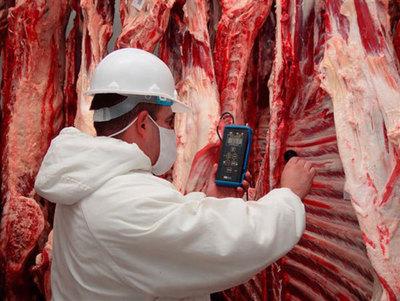 Carne del departamento de Concepción irá a Arabia Saudita
